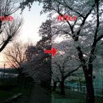 逆光の写真もPhotoshopで明るく補正出来る